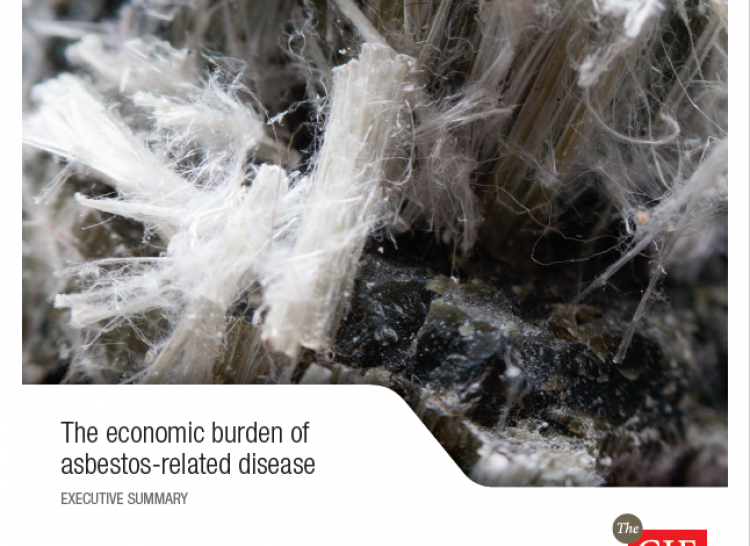 The economic burden of asbestos-related disease cover