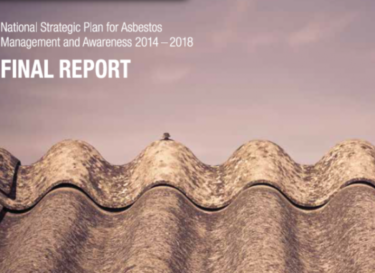National Strategic Plan for Asbestos Management and Awareness 2014 - 2018 Final Report
